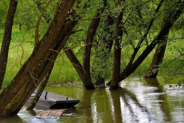 Barque au milieu des arbres à cause de l'Ill en crue